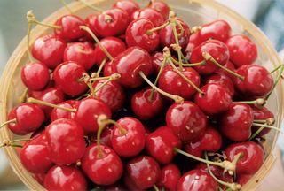 Cherries-1329233-1599x1078