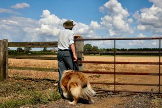 Farmer-and-dog-1187022-1279x850