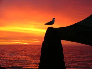 Sunset-1547154-640x480